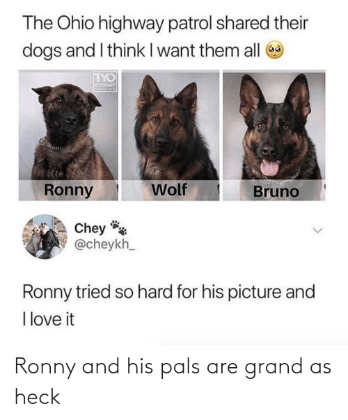 pals: Ronny and his pals are grand as heck