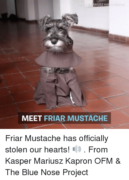 Memes, 🤖, and Project: RONOFM  RIUSZKA  MEET FRIAR MUSTACHE Friar Mustache has officially stolen our hearts! 🔊 . From Kasper Mariusz Kapron OFM & The Blue Nose Project