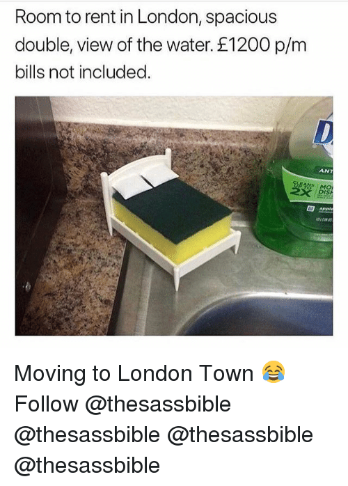 Memes, London, and Water: Room to rent in London, spacious  double, view of the water. £1200 p/m  bills not included.  ANT  DIS  APE Moving to London Town 😂 Follow @thesassbible @thesassbible @thesassbible @thesassbible