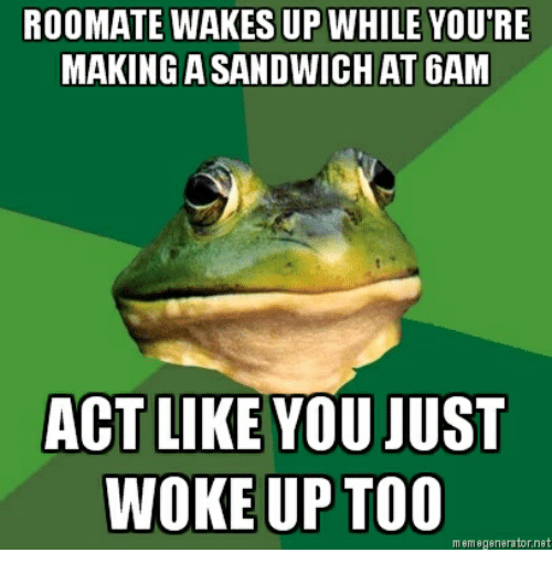 Net, Act, and Sandwich: ROOMATE WAKES UP WHILE YOU'RE  MAKING A SANDWICH AT 6AM  ACT LIKE YOU JUST  WOKE UP TOC  mem egenerator.net