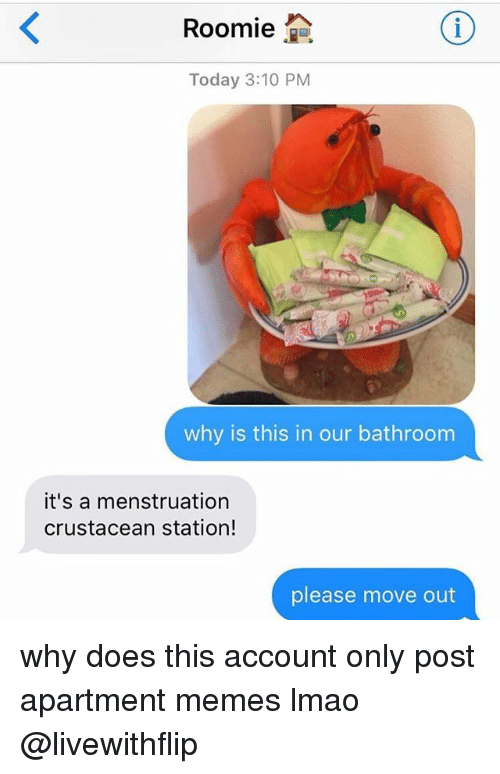 menstruation: Roomie  2a  Today 3:10 PM  why is this in our bathroom  it's a menstruation  crustacean station!  please move out why does this account only post apartment memes lmao @livewithflip