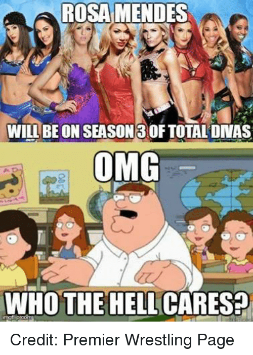 rosa mendes: ROSA MENDES  WILL BE ON SEASON 30F TOTAL DNAS  OMG  WHO THE HELL CARES? Credit: Premier Wrestling Page