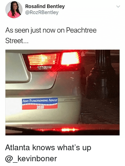 Funny, Meme, and Bentley: Rosalind Bentley  @RozRBentley  As seen just now on Peachtree  Street...  ANY FUNCTIONING ADULT  2020 Atlanta knows what's up @_kevinboner