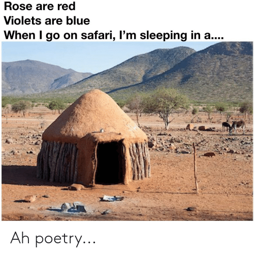 Rose Are Red Violets Are Blue: Rose are red  Violets are blue  When I go on safari, l'm sleeping in a.... Ah poetry...