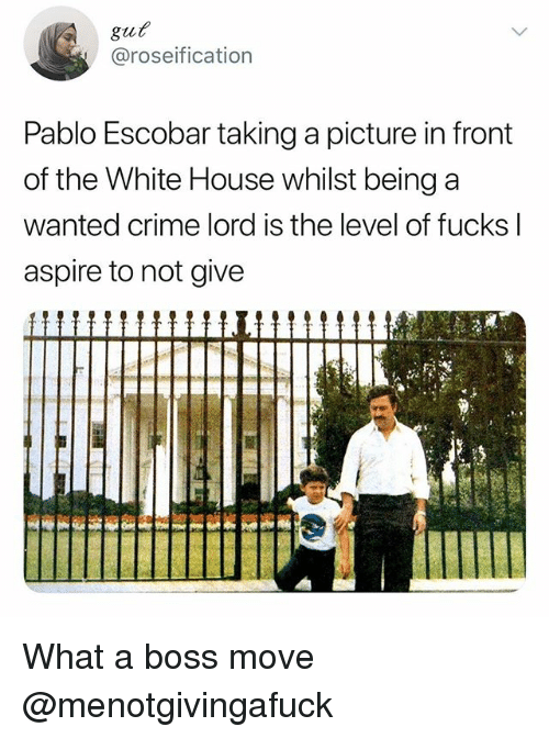 Crime, Funny, and Meme: @roseification  Pablo Escobar taking a picture in front  of the White House whilst being a  wanted crime lord is the level of fucks l  aspire to not give What a boss move @menotgivingafuck