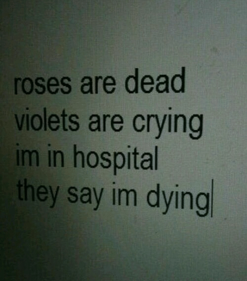 Im Dying: roses are dead  violets are crying  im in hospital  they say im dying