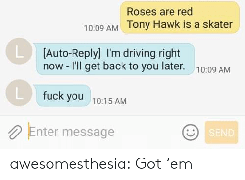Skater: Roses are red  10:09 AM Tony Hawk is a skater  L Auto-Reply] I'm driving right  now -I'll get back to you later.  10:09 AM  fuck you  10:15 AM  Enter message  SEND awesomesthesia:  Got 'em