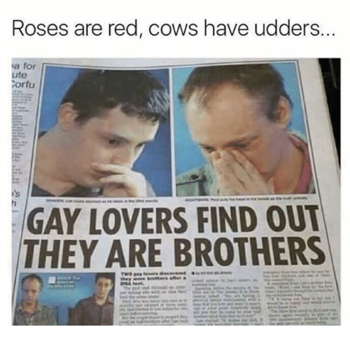 Dank Memes, Red, and Gay: Roses are red, cows have udders.  ha for  ute  Corfu  GAY LOVERS FIND OUT  THEY ARE BROTHERS