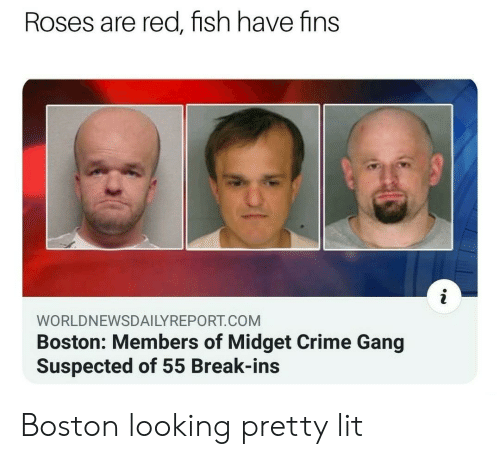 roses are red: Roses are red, fish have fins  WORLDNEWSDAILYREPORT.COM  Boston: Members of Midget Crime Gang  Suspected of 55 Break-ins Boston looking pretty lit