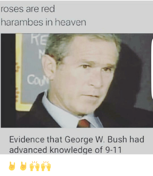 9/11, Funny, and George W. Bush: roses are red  harambes in heaven  Evidence that George W. Bush had  advanced knowledge of 9-11 🤘🤘🙌🙌