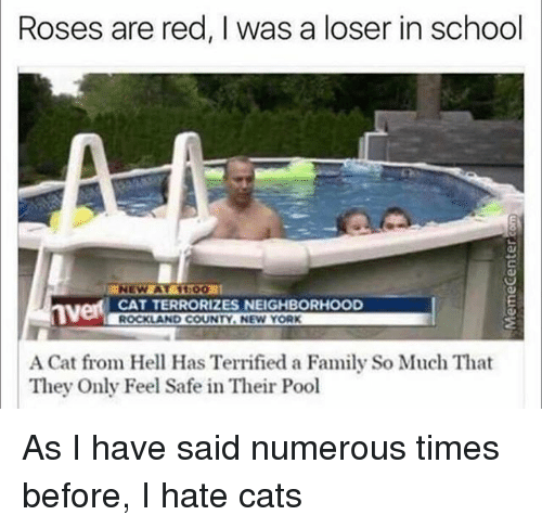 Cats, Family, and Funny: Roses are red, I was a loser in school  CAT TERRORIZES NEIGHBORHOOD  ROCKLAND COUNTY. NEW YORK  A Cat from Hell Has Terrified a Family So Much That  They Only Feel Safe in Their Pool As I have said numerous times before, I hate cats