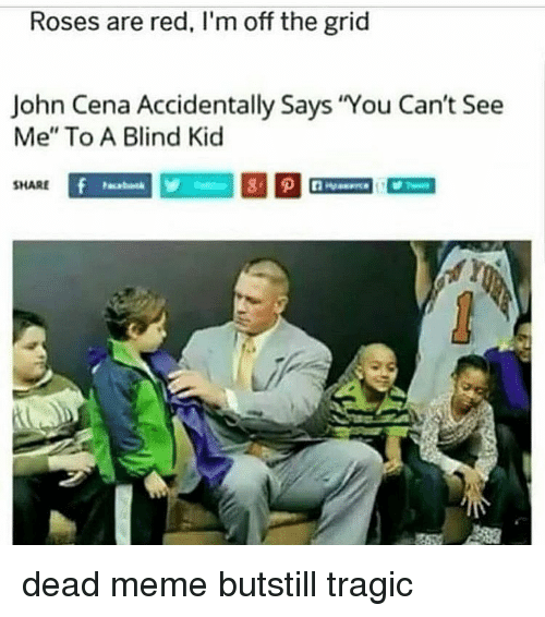 """Cant See Me: Roses are red, I'm off the grid  John Cena Accidentally Says You Can't See  Me"""" To A Blind Kic  SHARE dead meme butstill tragic"""