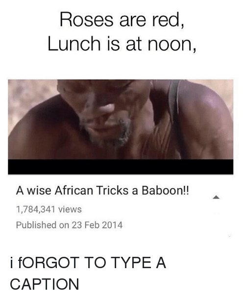 Memes, Rose, and Captioned: Roses are red  Lunch is at noon,  A wise African Tricks a Baboon!!  1,784,341 views  Published on 23 Feb 2014 i fORGOT TO TYPE A CAPTION