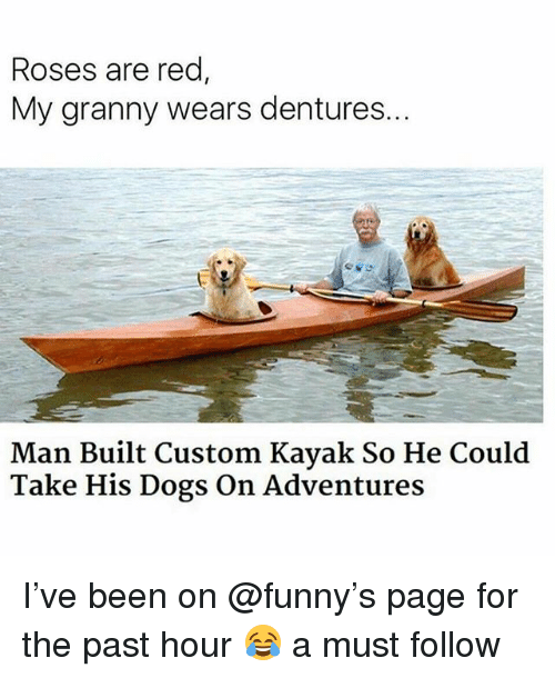 Dogs, Funny, and Kayak: Roses are red  My granny wears dentures.  Man Built Custom Kayak So He Could  Take His Dogs On Adventures I've been on @funny's page for the past hour 😂 a must follow