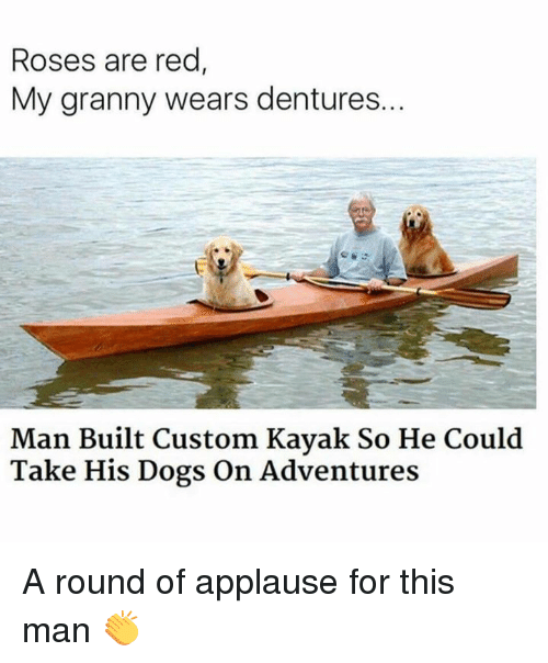 Dogs, Memes, and Kayak: Roses are red  My granny wears dentures..  Man Built Custom Kayak So He Could  Take His Dogs On Adventures A round of applause for this man 👏