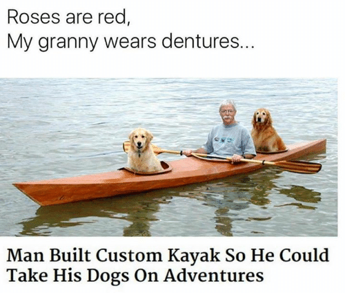 Dogs, Memes, and Kayak: Roses are red  My granny wears dentures..  Man Built Custom Kayak So He Could  Take His Dogs On Adventures