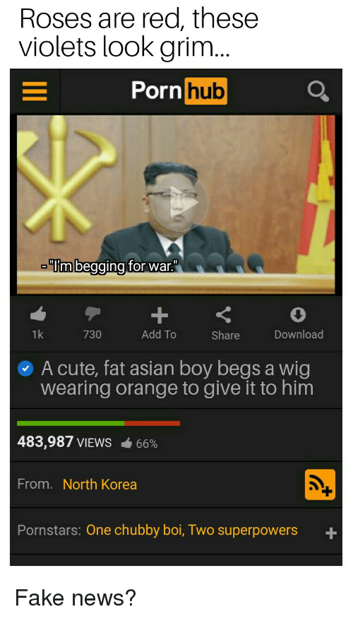 "Asian, Cute, and Fake: Roses are red, these  violets look grim  Porn hub  im begging for war""  1k  730  Add To  Share  Download  A cute, fat asian boy begs a wig  wearing orange to give it to him  483,987 VIEWS-66%  From. North Korea  Pornstars: One chubby boi, Two superpowers +"
