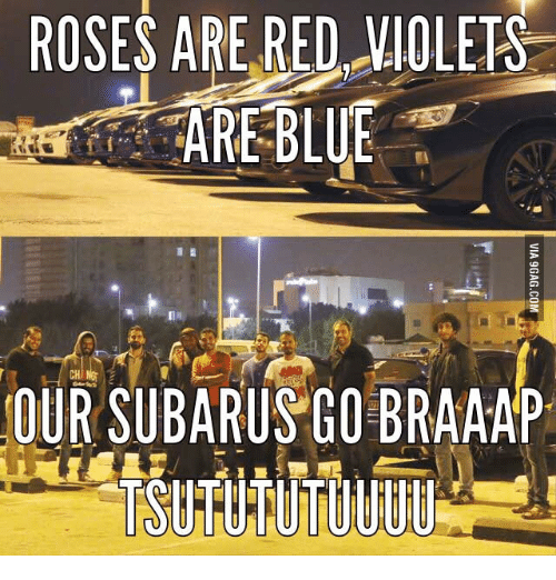 Rose Are Red Violets Are Blue: ROSES ARE RED VIOLETS  ARE BLUE  CH  OUR SUBARUSGO BRAAAP