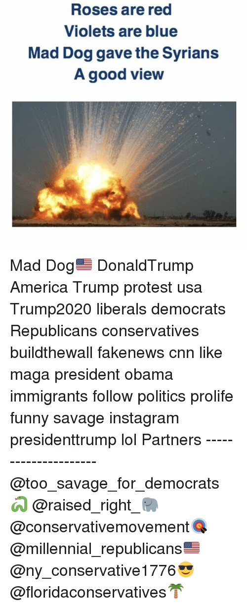 Trump Protesters: Roses are red  Violets are blue  Mad Dog gave the Syrians  A good view Mad Dog🇺🇸 DonaldTrump America Trump protest usa Trump2020 liberals democrats Republicans conservatives buildthewall fakenews cnn like maga president obama immigrants follow politics prolife funny savage instagram presidenttrump lol Partners --------------------- @too_savage_for_democrats🐍 @raised_right_🐘 @conservativemovement🎯 @millennial_republicans🇺🇸 @ny_conservative1776😎 @floridaconservatives🌴