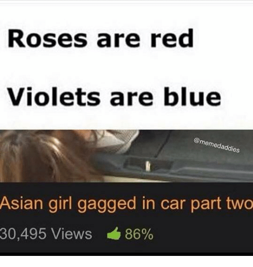Asian, Blue, and Girl: Roses are red  Violets are blue  @me  addies  Asian girl gagged in car part two  30,495 Views 86%