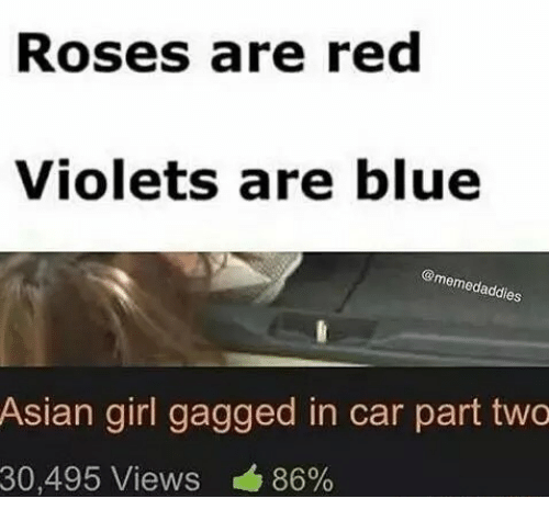 Asian, Blue, and Girl: Roses are red  Violets are blue  @memedad es  Asian girl gagged in car part two  30,495 Views 86%