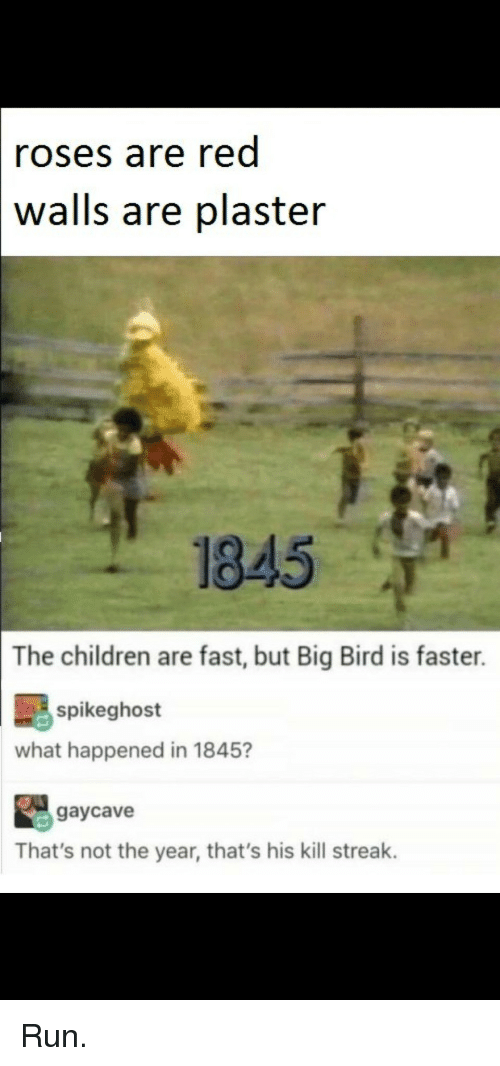 Kill Streak: roses are red  walls  are plaster  1845  The children are fast, but Big Bird is faster.  spikeghost  what happened in 1845?  gaycave  That's not the year, that's his kill streak. Run.