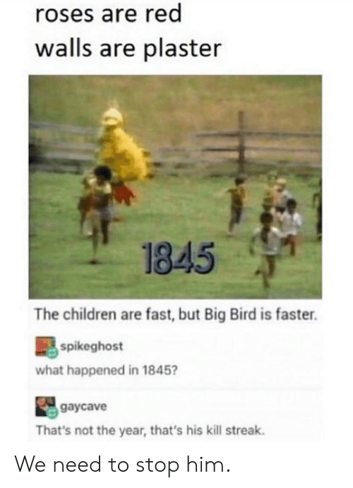 Kill Streak: roses are red  walls are plaster  1845  The children are fast, but Big Bird is faster.  spikeghost  what happened in 1845  gaycave  That's not the year, that's his kill streak. We need to stop him.