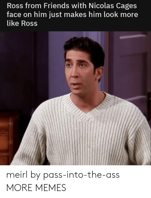 The Ass: Ross from Friends with Nicolas Cages  face on him just makes him look more  like Ross meirl by pass-into-the-ass MORE MEMES