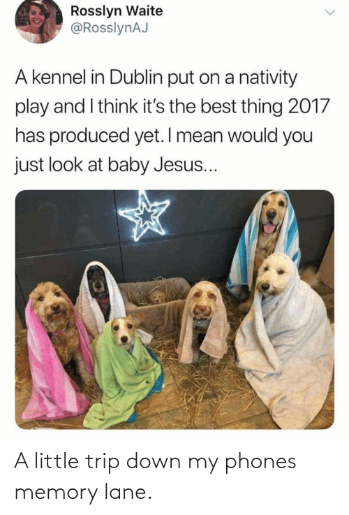 nativity: Rosslyn Waite  @RosslynAJ  A kennel in Dublin put on a nativity  play and I think it's the best thing 2017  has produced yet. I mean would you  just look at baby Jesus... A little trip down my phones memory lane.