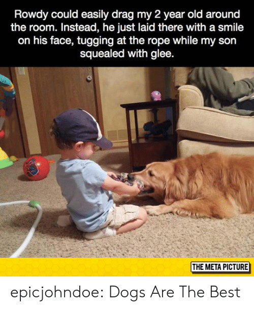 Rowdy: Rowdy could easily drag my 2 year old around  the room. Instead, he just laid there with a smile  on his face, tugging at the rope while my son  squealed with glee  THE META PICTURE epicjohndoe:  Dogs Are The Best