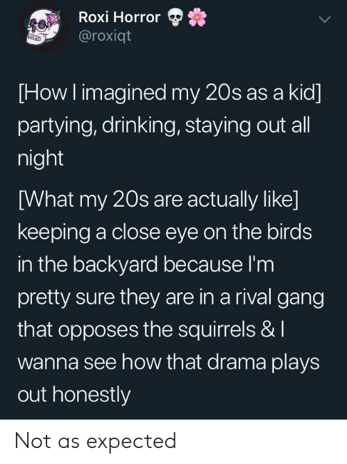 squirrels: Roxi Horror  @roxiqt  [How I imagined my 20s as a kid  partying, drinking, staying out all  night  [What my 20s are actually like]  keeping a close eye on the birds  in the backyard because I'm  pretty sure they are in a rival gang  that opposes the squirrels & I  wanna see how that drama plays  out honestly Not as expected