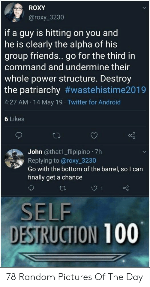 The Patriarchy: ROXY  @roxy 3230  if a guy is hitting on you and  he is clearly the alpha of his  group friends.. go for the third in  command and undermine their  whole power structure. Destroy  the patriarchy #wastehistime2019  4:27 AM 14 May 19 Twitter for Android  6 Likes  John @that1_flipipino 7h  Replying to @roxy 3230  Go with the bottom of the barrel, so I can  finally get a chance  SELF  DESTRUCTION 100 78 Random Pictures Of The Day