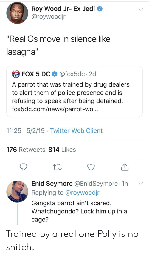 """gangsta: Roy Wood Jr- Ex Jedi  @roywoodjr  """"Real Gs move in silence like  lasagna  台FOX 5 DC $ @fox5dc . 2d  A parrot that was trained by drug dealers  to alert them of police presence and is  refusing to speak after being detained  fox5dc.com/news/parrot-wo  11:25 5/2/19 - Twitter Web Client  176 Retweets 814 Likes  Enid Seymore @EnidSeymore 1h v  Replying to @roywoodjr  Gangsta parrot ain't scared  Whatchugondo? Lock him up in a  cage? Trained by a real one Polly is no snitch."""