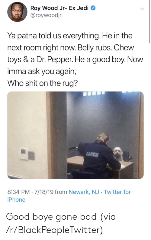 Roy: Roy Wood Jr- Ex Jedi  @roywoodjr  Ya patna told us everything. He in the  next room right now. Belly rubs. Chew  toys & a Dr. Pepper. He a good boy. Now  imma ask you again,  Who shit on the rug?  GARDA  8:34 PM 7/18/19 from Newark, NJ Twitter for  iPhone Good boye gone bad (via /r/BlackPeopleTwitter)