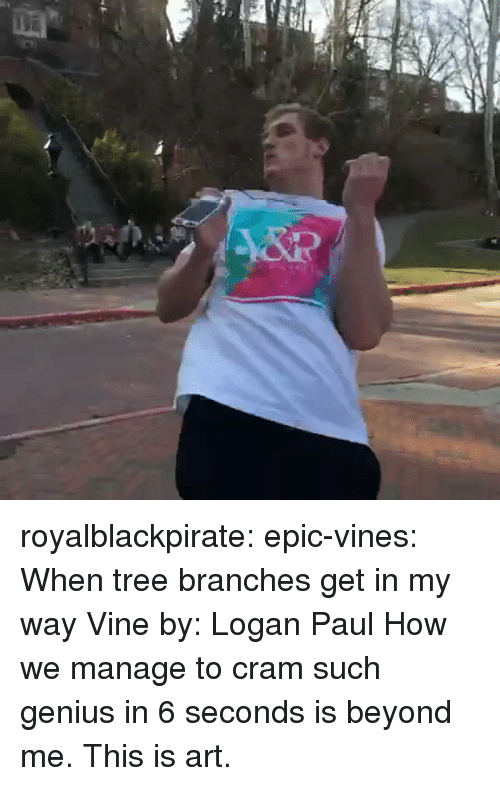 logan paul: royalblackpirate:  epic-vines:  When tree branches get in my way Vine by: Logan Paul  How we manage to cram such genius in 6 seconds is beyond me. This is art.