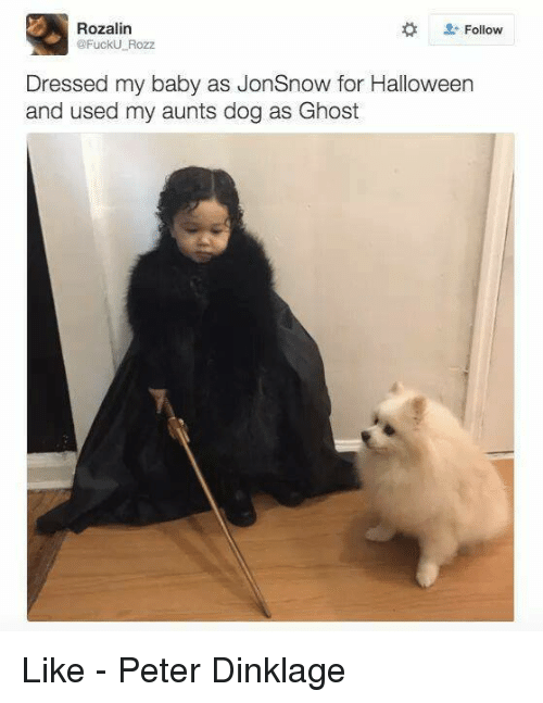 Halloween, Memes, and Fuck: Rozalin  Follow  @Fuck Rozz  Dressed my baby as JonSnow for Halloween  and used my aunts dog as Ghost Like - Peter Dinklage
