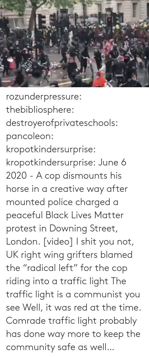 "Horse: rozunderpressure:  thebibliosphere: destroyerofprivateschools:  pancoleon:   kropotkindersurprise:  kropotkindersurprise: June 6 2020 - A cop dismounts his horse in a creative way after mounted police charged a peaceful Black Lives Matter protest in Downing Street, London. [video]    I shit you not, UK right wing grifters blamed the ""radical left"" for the cop riding into a traffic light    The traffic light is a communist you see    Well, it was red at the time.  Comrade traffic light probably has done way more to keep the community safe as well…"