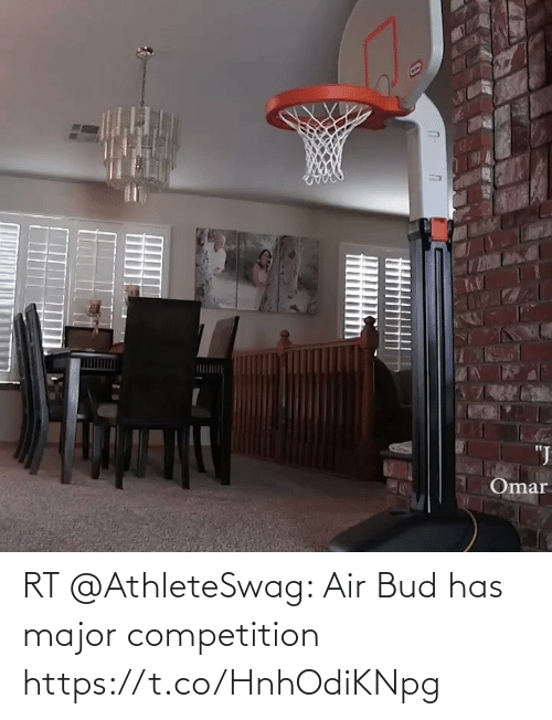 major: RT @AthleteSwag: Air Bud has major competition https://t.co/HnhOdiKNpg