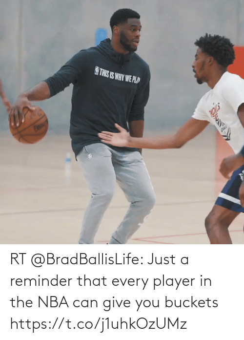 player: RT @BradBallisLife: Just a reminder that every player in the NBA can give you buckets   https://t.co/j1uhkOzUMz