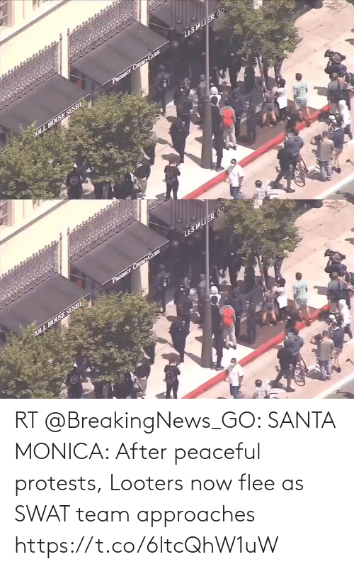 Protests: RT @BreakingNews_GO: SANTA MONICA: After peaceful protests, Looters now flee as SWAT team approaches https://t.co/6ltcQhW1uW
