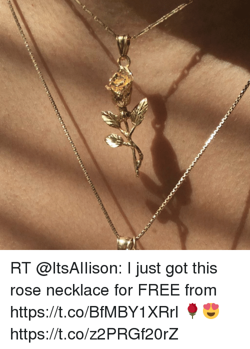 Memes, Free, and Rose: RT @ItsAIIison: I just got this rose necklace for FREE from https://t.co/BfMBY1XRrl 🌹😍 https://t.co/z2PRGf20rZ