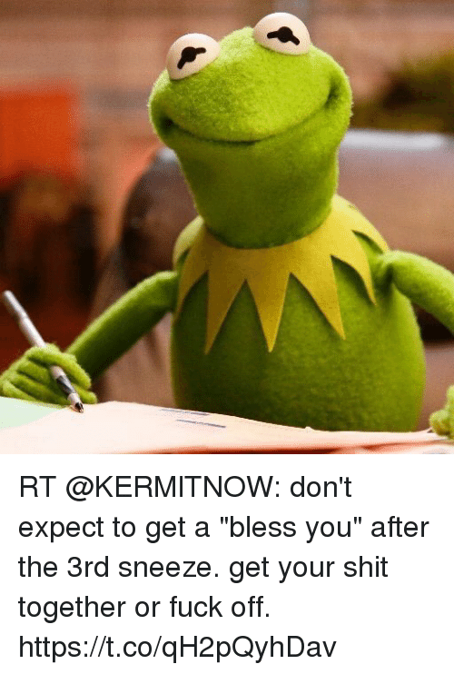 "Memes, Shit, and Fuck: RT @KERMlTNOW: don't expect to get a ""bless you"" after the 3rd sneeze. get your shit together or fuck off. https://t.co/qH2pQyhDav"