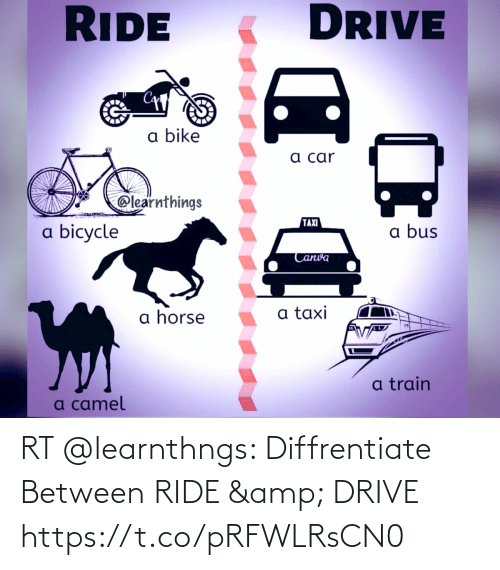 ride: RT @learnthngs: Diffrentiate Between   RIDE & DRIVE https://t.co/pRFWLRsCN0
