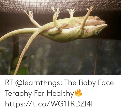 the baby: RT @learnthngs: The Baby Face Teraphy For Healthy🔥 https://t.co/WG1TRDZl4l