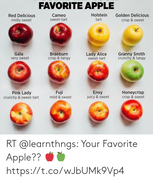 Your: RT @learnthngs: Your Favorite Apple?? 🍎🍏 https://t.co/wJbUMk9Vp4