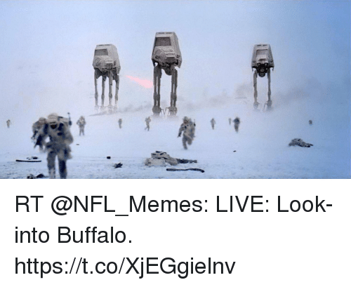 Football, Memes, and Nfl: RT @NFL_Memes: LIVE: Look-into Buffalo. https://t.co/XjEGgielnv