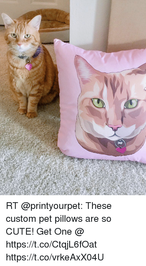 RT These Custom Pet Pillows Are So CUTE! Get One ...
