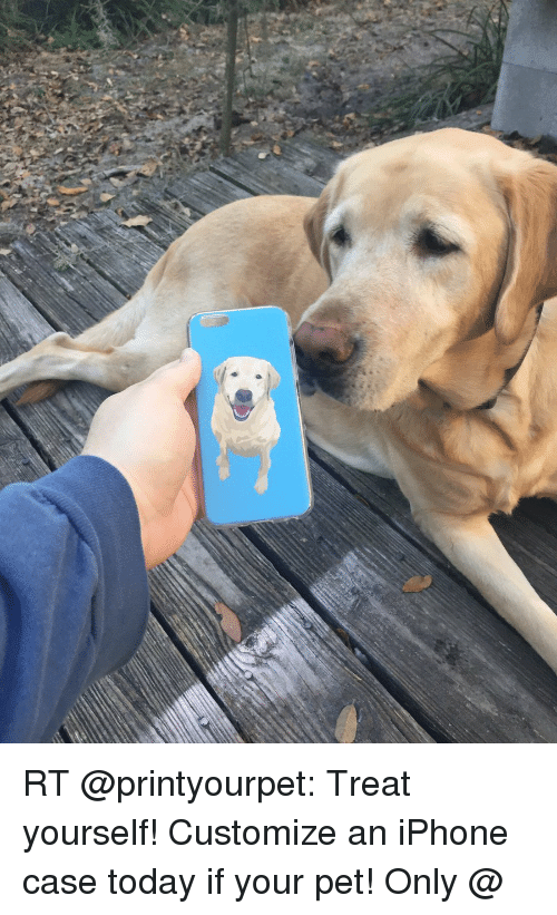 Iphone, Memes, and Today: RT @printyourpet: Treat yourself! Customize an iPhone case today if your pet! Only @