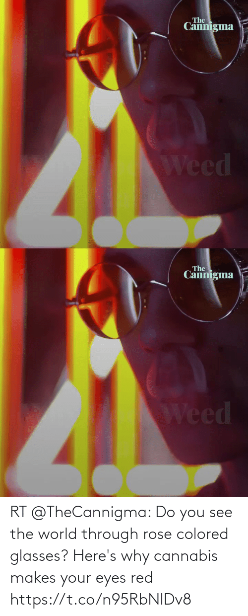 Rose: RT @TheCannigma: Do you see the world through rose colored glasses? Here's why cannabis makes your eyes red https://t.co/n95RbNIDv8