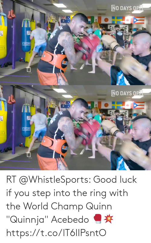 """You Step: RT @WhistleSports: Good luck if you step into the ring with the World Champ Quinn """"Quinnja"""" Acebedo 🥊💥 https://t.co/lT6IIPsntO"""